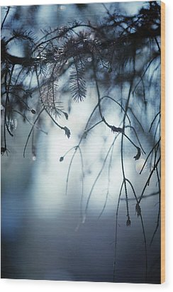 Wood Print featuring the photograph Winter by Rebecca Cozart