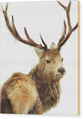 Winter Red Deer Wood Print by Amy Hamilton