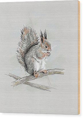 Winter Red Squirrel Wood Print