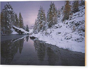 Winter Reverie Wood Print