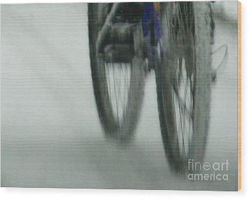Winter Ride Wood Print