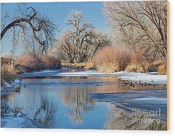 Winter River In Colorado Wood Print