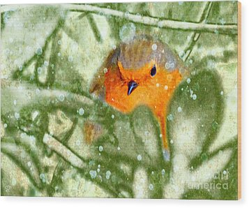 Wood Print featuring the photograph Winter Robin by LemonArt Photography