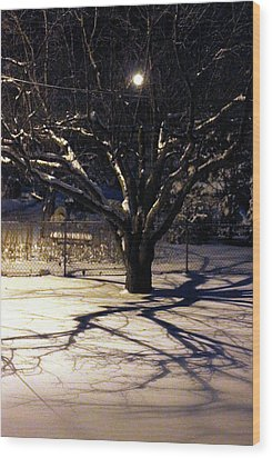 Winter Romace Wood Print