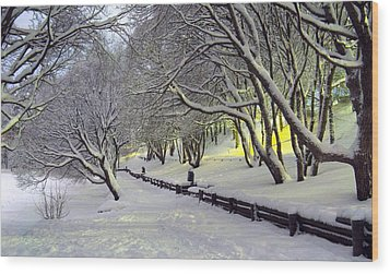 Wood Print featuring the photograph Winter Scene 1 by Sami Tiainen