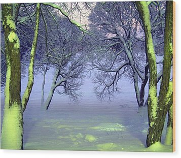 Wood Print featuring the photograph Winter Scene 2 by Sami Tiainen