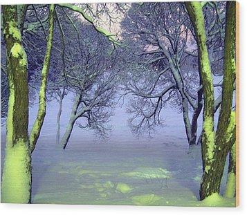 Winter Scene 2 Wood Print by Sami Tiainen