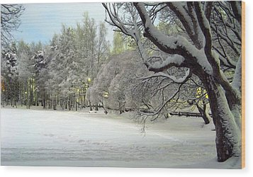 Wood Print featuring the photograph Winter Scene 3 by Sami Tiainen