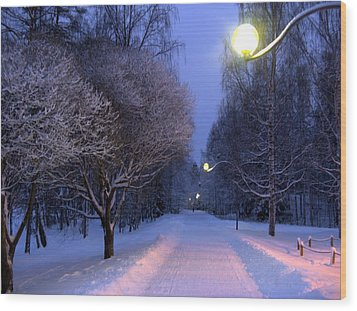 Wood Print featuring the photograph Winter Scene 4 by Sami Tiainen