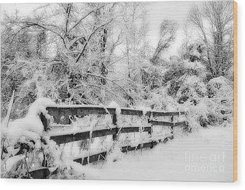 Winter Scene Wood Print by Kathy Jennings