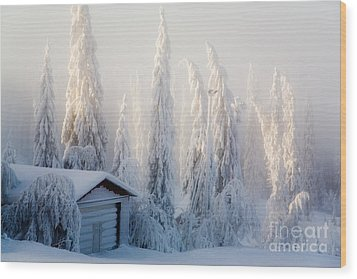 Winter Scene Wood Print by Kati Molin