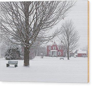 Winter Scene Wood Print by Tim Kirchoff