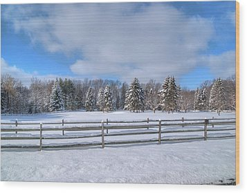 Wood Print featuring the photograph Winter Scenery 14589 by Guy Whiteley