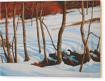Winter Shadows Wood Print by Faye Ziegler