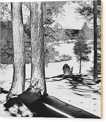 Wood Print featuring the photograph Winter Shadows by David Patterson
