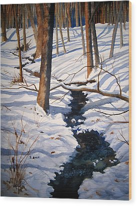 Winter Shadows Wood Print by Shirley Braithwaite Hunt