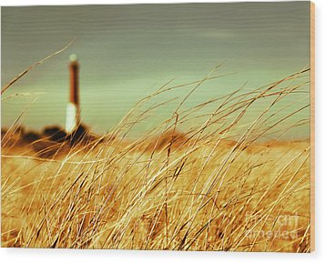 Winter Shore Breeze Wood Print