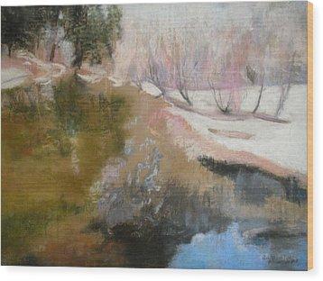 Winter Showoff Wood Print by Anita Stoll