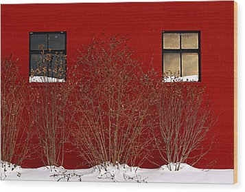 Wood Print featuring the photograph Winter Sky Reflection by Don Nieman