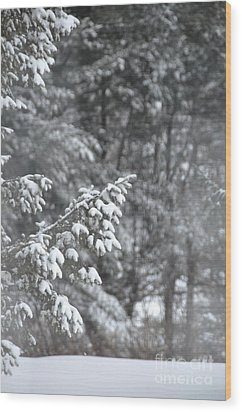 Wood Print featuring the photograph Winter Snow by John Black