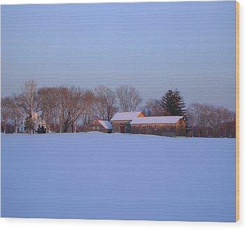 Winter Solace Wood Print by Leonardo Ruggieri