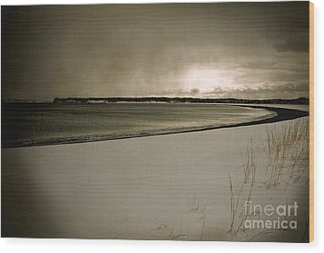Wood Print featuring the photograph Winter Solitude by Alana Ranney