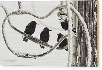 Wood Print featuring the photograph Winter Starlings by Don Durfee