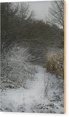 Wood Print featuring the photograph Winter Stew by Jan Piller