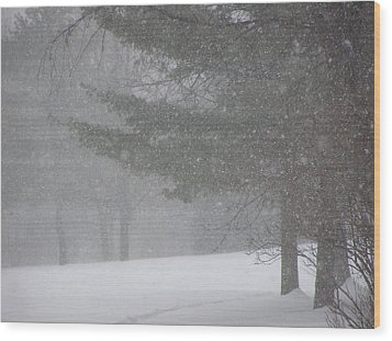 Winter Storm In Bush Wood Print by Richard Mitchell
