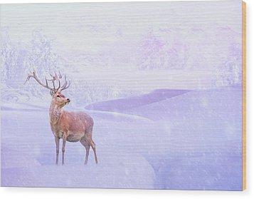 Winter Story Wood Print