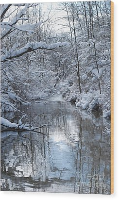 Wood Print featuring the photograph Winter Stream by Lila Fisher-Wenzel