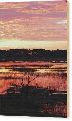 Wood Print featuring the photograph Winter Sunrise by Margaret Palmer