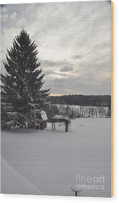 Wood Print featuring the photograph Winter Sunset - 2 by John Black