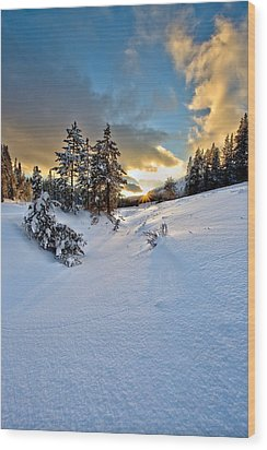 Winter Sunset Wood Print by David Andersen