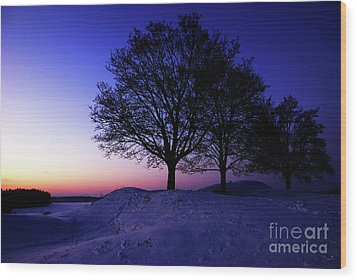 Winter Sunset Wood Print by Hannes Cmarits