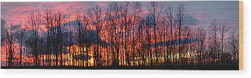 Wood Print featuring the photograph Winter Sunset Panorama by Francesa Miller