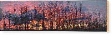 Winter Sunset Panorama Wood Print by Francesa Miller