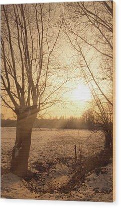 Winter Sunset Wood Print by Wim Lanclus