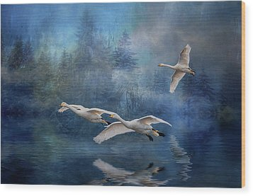 Winter Swans Wood Print