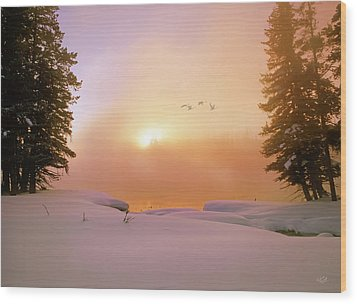 Wood Print featuring the photograph Winter Swans by Leland D Howard
