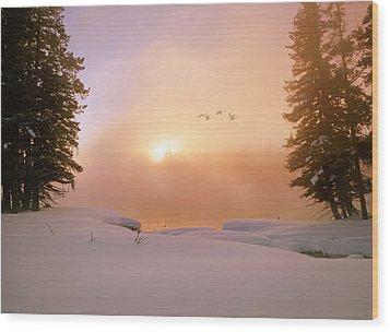 Winter Swans Wood Print by Leland D Howard