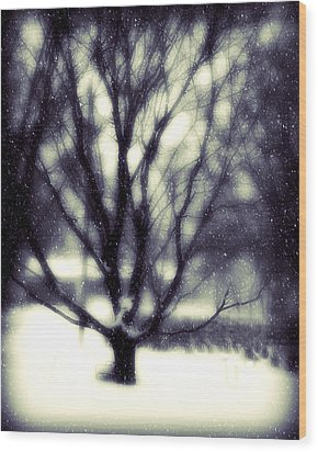 Winter Tree 3 Wood Print by Perry Webster