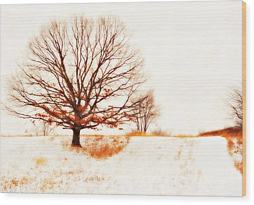Winter Tree Wood Print by Randy Steele