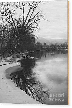Winter Tree Reflection - Black And White Wood Print by Carol Groenen