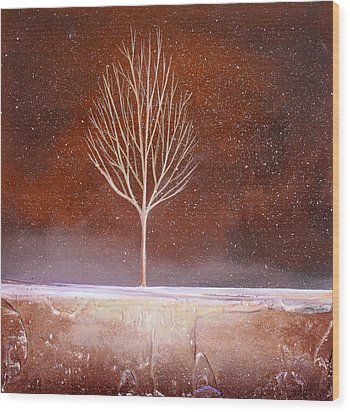 Winter Tree Wood Print by Toni Grote