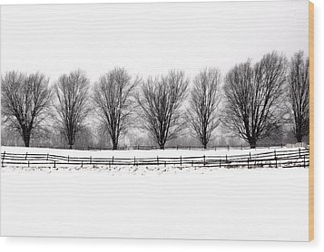 Wood Print featuring the photograph Winter Treeline by Don Nieman