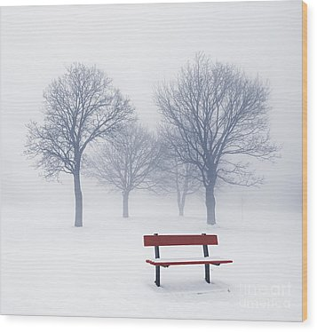 Winter Trees And Bench In Fog Wood Print by Elena Elisseeva