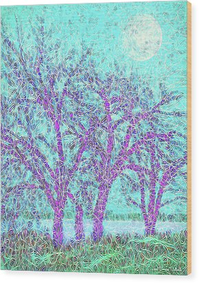 Wood Print featuring the digital art Winter Trees In Moonlight Blue - Boulder County Colorado by Joel Bruce Wallach