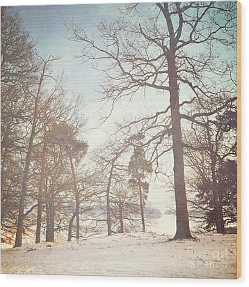Wood Print featuring the photograph Winter Trees by Lyn Randle