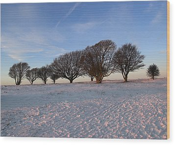 Winter Trees On The Ring Wood Print by Hazy Apple